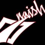 naish_logo copy