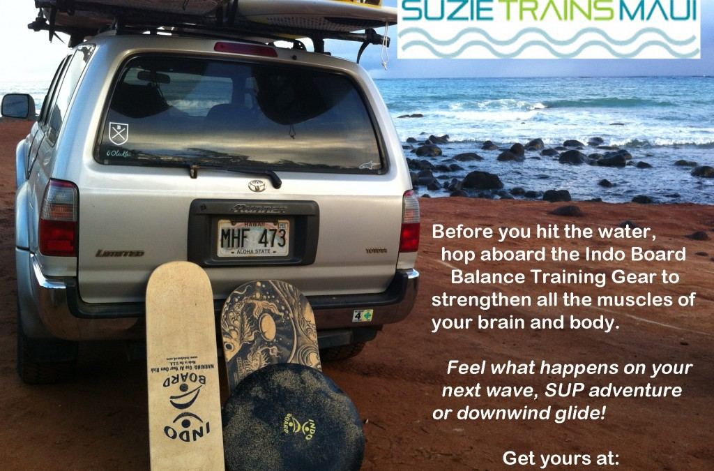 Before You Step On The Water Hop Aboard The Indo Board Balance Trainer Gear