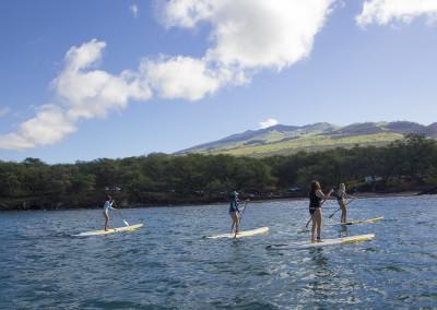 Suzie Cooney True Collection Maui