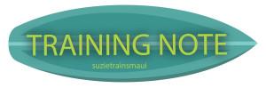 suzietrainsmaui_traingingnote-01-1[1] copy