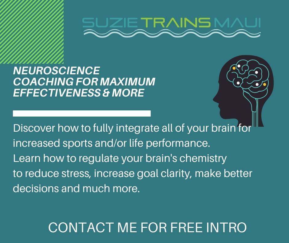 neuroscience coaching